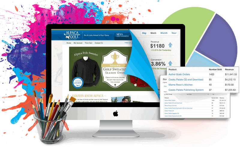 How can you make your E-commerce site more Professional?