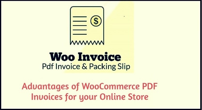 invoice plugin advantage